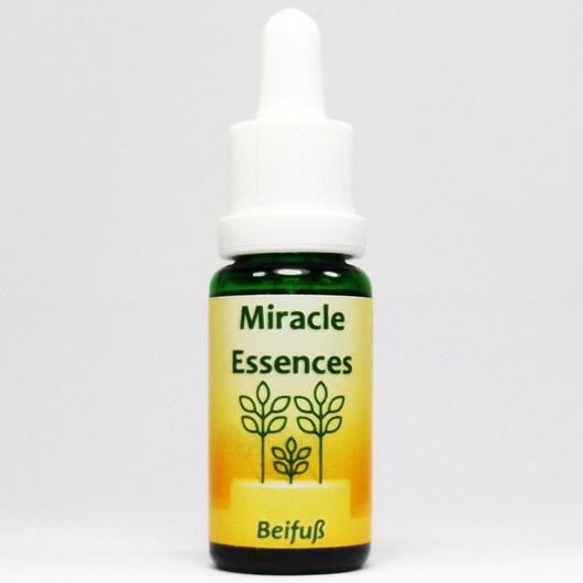 Beifuß Blütenessenzen Miracle Essences