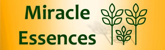 Miracle Essences wilde Blütenessenzen
